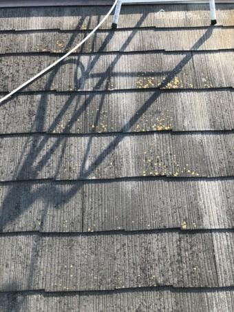 八尾市 スレート屋根 サビ