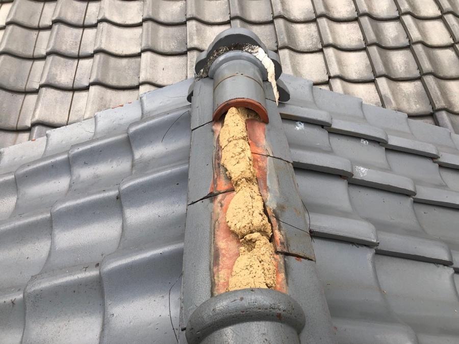 棟の瓦が落下