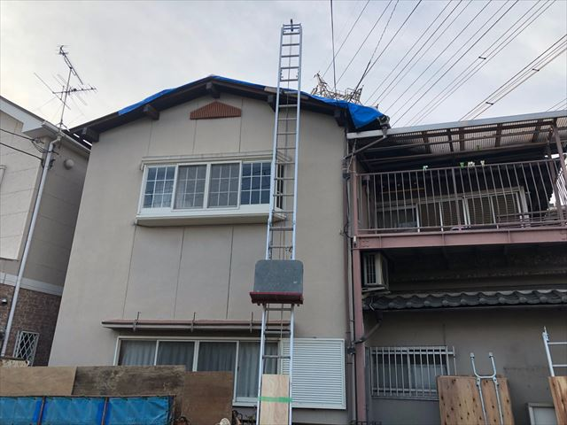 屋根とはしご