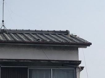瓦屋根ズーム