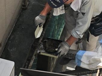 カーポート樋清掃