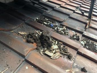 屋根の上にごみ