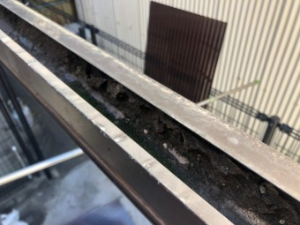 波板の下の樋のごみ