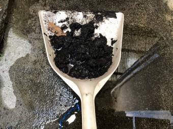 樋に詰まっていたゴミ