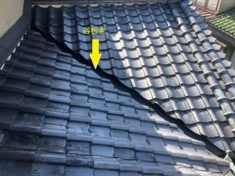 下屋の屋根確認