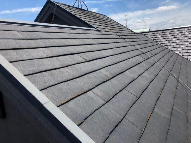 築20年強の屋根