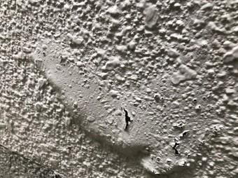 外壁にふくらみ