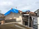 屋根にシート