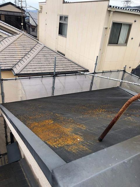 カラーベストの屋根にカビ