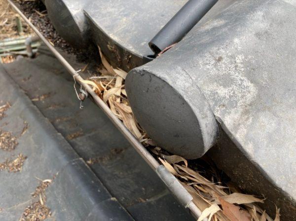 軒樋の詰まり