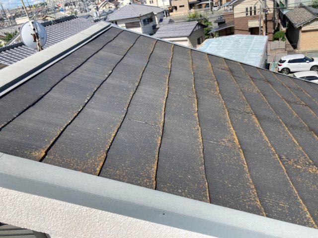 八尾市で屋根点検