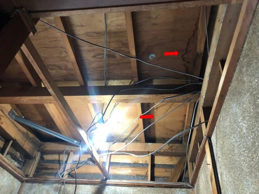 天井裏の雨漏れ跡