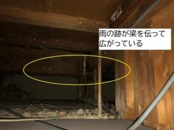 八尾市天井裏の点検