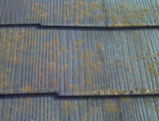 八尾 屋根