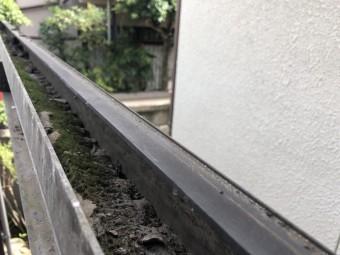 波板 樋の掃除 八尾