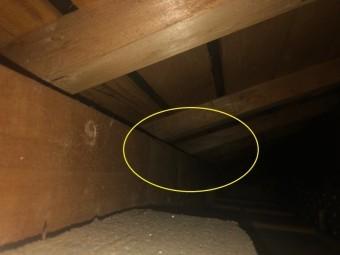 天井裏に雨漏りの跡
