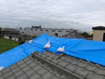八尾市 屋根にブルーシート