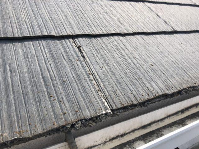 屋根に苔がついている