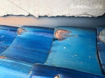 八尾市 雨漏り 外壁