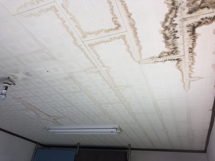 雨漏りで天井にシミ