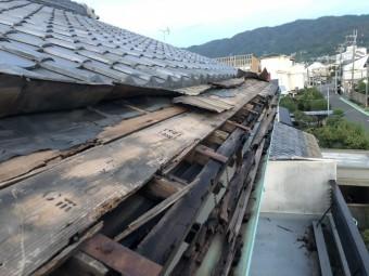 八尾市 屋根がめくれた