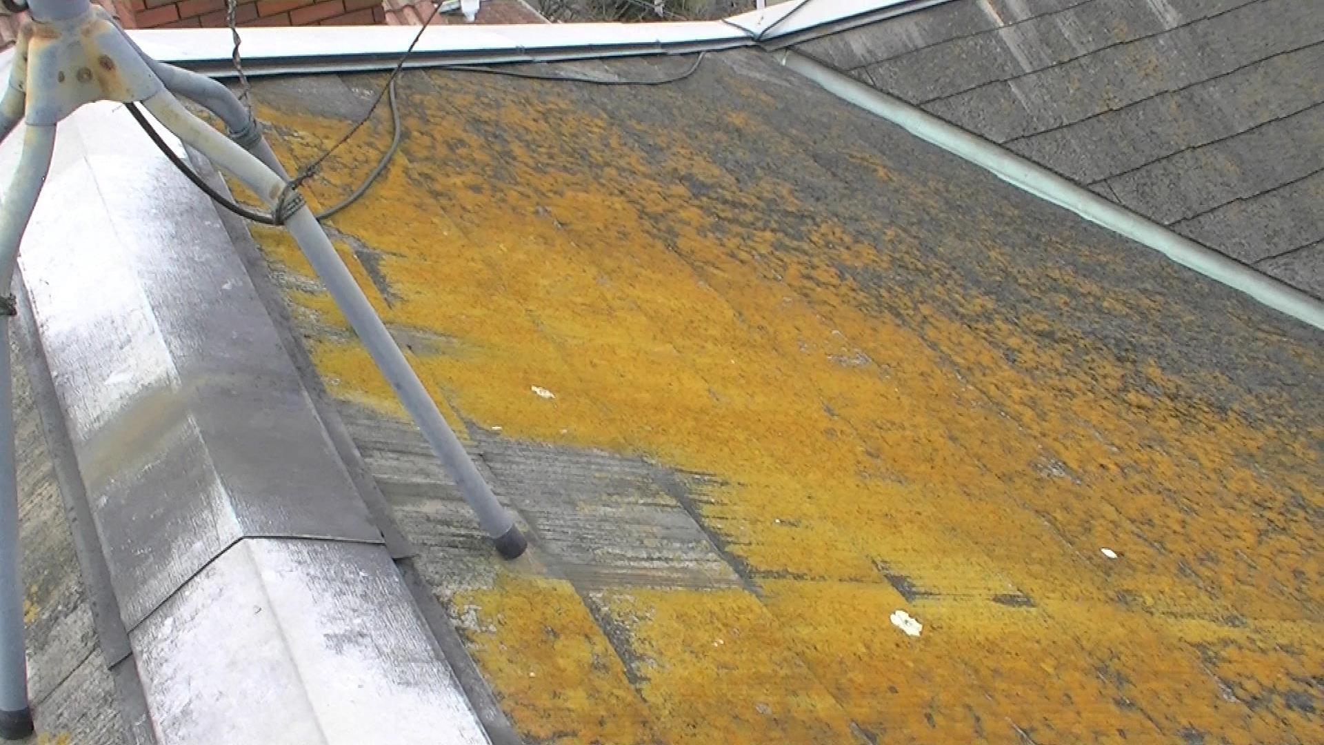東大阪市で築25年の屋根が汚いので見てほしいとお問い合わせ