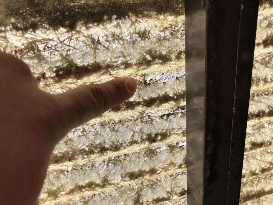 八尾市 波板から雨漏れ