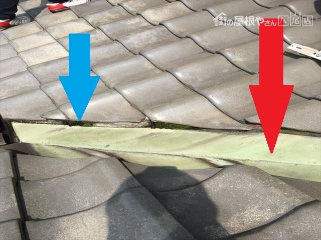 八尾市 屋根に苔が生える